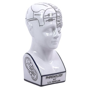 Phrenology Head (klein)